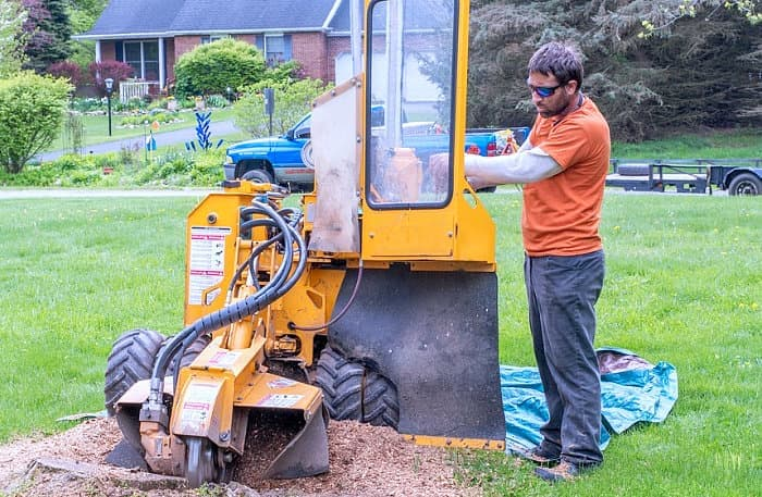 a young man runs a machine called a stump grinder