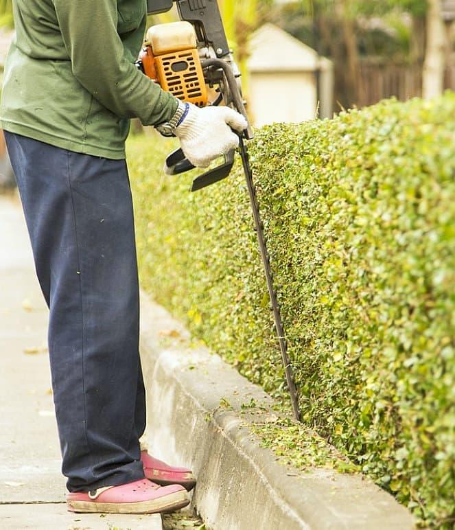 gardener landscaping